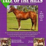 2011 Stallion Ad, California Thoroughbred
