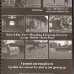 2011/2012 California Thoroughbred Industry Directory