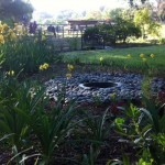 garden042212d