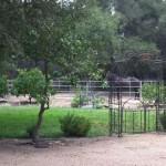 Lady's Secret Memorial Garden